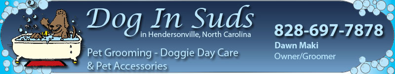 Hendersonville Pet Grooming Pet Day Care Pet Accessories